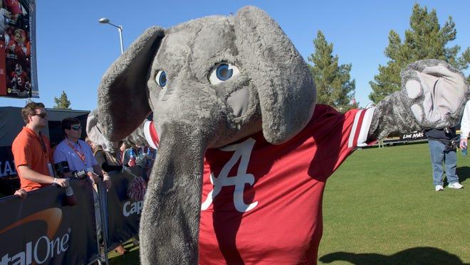 Alabama mascot Big Al before the National Championship Game on Monday January 11, 2016 at University of Phoenix Stadium in Glendale, Az. (Mickey Welsh / Montgomery Advertiser)