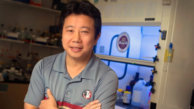 Hengli Tang, a Florida State University biology professor with an area of expertise in molecular and cell biology, is lead author on a groundbreaking study of the Zika virus and brain development.