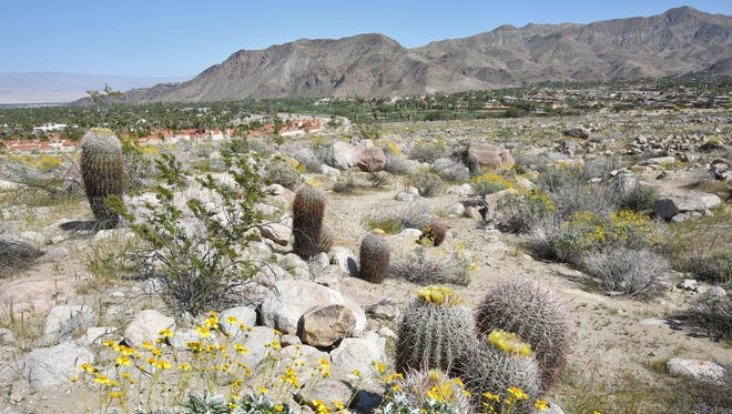 A large scenic area near the South Lykken Trailhead could become a 117-acre development of 160 homes on South Palm Canyon Drive.