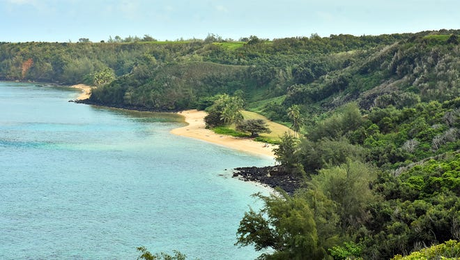 This Jan. 15, 2017 file photo shows public Pilaa Beach, center, below hillside and ridge top land owned by Facebook CEO Mark Zuckerberg and his wife Pricilla Chan, near Kilauea on the north shore of Kauai in Hawaii. The couple are dropping lawsuits seeking to buy out Native Hawaiians who own small parcels of land within their 700-acre Kauai estate.