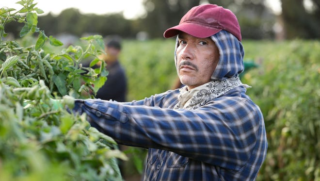 "Benito Martinez plays an undocumented Mexican farmworker whose knowledge of English changes the balance of power with his boss in ABC's ""American Crime."""