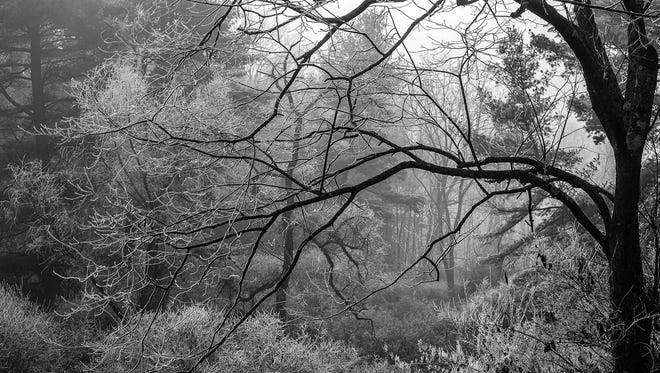 Chuck Haupt's photography will be part of a new exhibit at Cooperative Gallery 213.