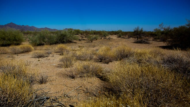 The undeveloped 134 acres of state land on June 20, 2018, in Scottsdale.