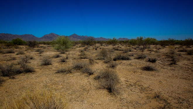 Undeveloped land on Wednesday, June 20, 2018, in Scottsdale, Arizona. The city of Scottsdale has approved an agreement that could lead to 136 acres of state trust lands to be developed.