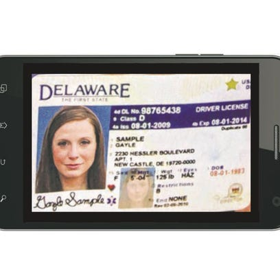 An illustration of what a digital Delaware drivers