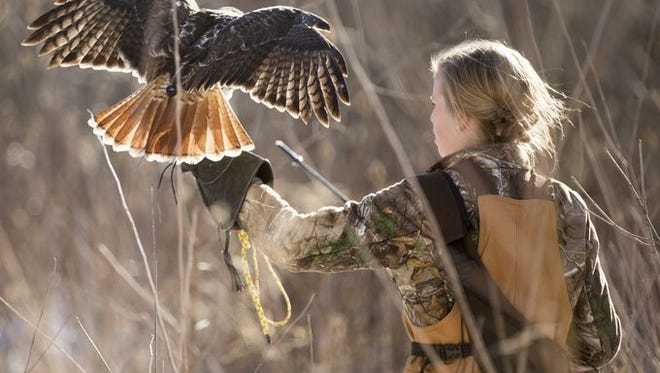 Stephanie Thomson, 17, with her red-tailed hawk, during a falconry session, Brownsburg, Saturday, Jan. 10, 2015.