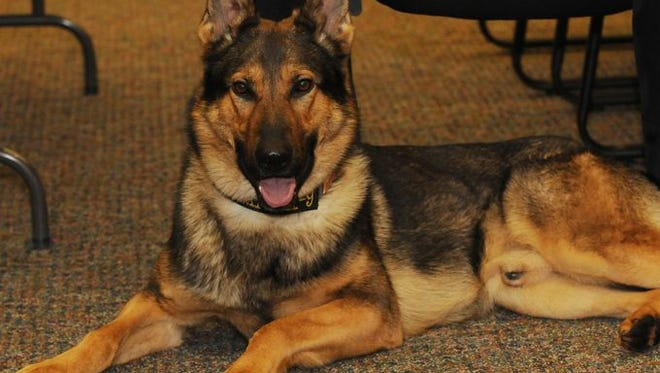 """""""SHOOT'N for a Reason"""" continues to benefit the Reen Lake County Sheriff's Department K-9 unit."""