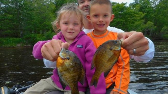 Panfishing in Eagle Area has been 'excellent' with bluegills biting best