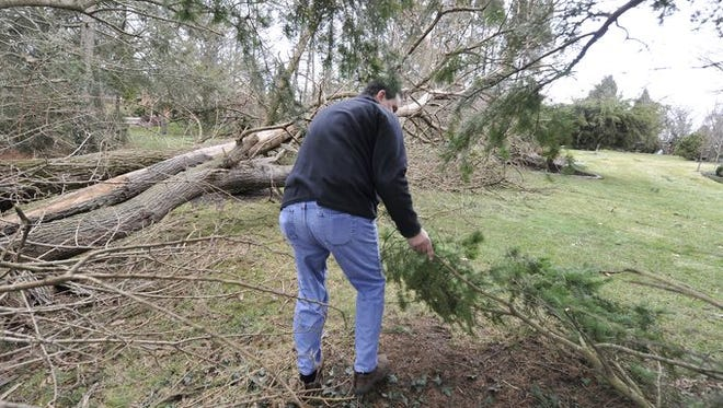 Mark Friedenfeld is seen here making his way through trees knocked down at his York Township home following a storm in February.