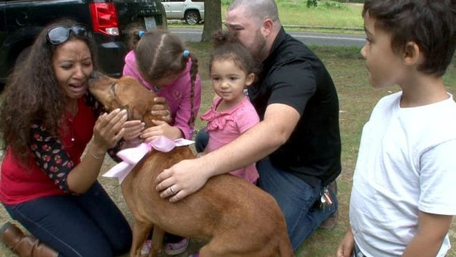 Cali gives Brittney DiBartolo some dog kisses after being reunited with her family at the Broken Promises Sanctuary in Howell Sunday morning, June 4, 2017. The dog went missing from the family two years ago then was discovered nearly dead at a highway rest stop about two months ago and was brought to the sanctuary for treatment. Other family members shown (l-r). daughter Maddison, 5, daughter Kaylee, 2, husband Larry,  and son Lucas, 4. They are from Raleigh, NC