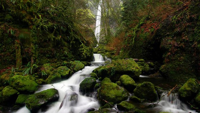 Elowah Falls thunders during spring in the Columbia River Gorge. It's one of the 13 best hikes in the Gorge.