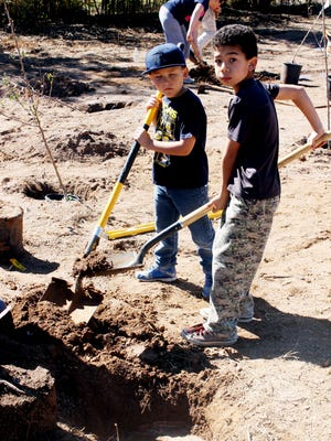 Harrison Schmitt Elementary School students Rowen Hunt, 7, and Jayvin Potter, 8, plant trees at Harrison Schmitt Elementary School on Saturday as part of the Neighborhood Orchards Project.