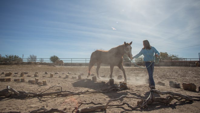 Nancy Marshall, CEO of Equine Assisted Programs of Southern New Mexico, walks Amiga the horse through the labyrinth course, Monday Nov. 20, 2017.
