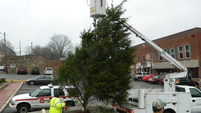 A City of Erin Public Works crew erects the city Christmas tree in Court Square last year. Despite ongoing construction on the square, the annual Tree Lighting ceremony is planned for Dec. 4.