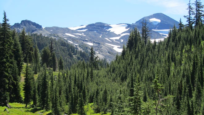 Middle Sister rises above a meadow along the Pacific Crest Trail a few miles from the Obsidian Trailhead.