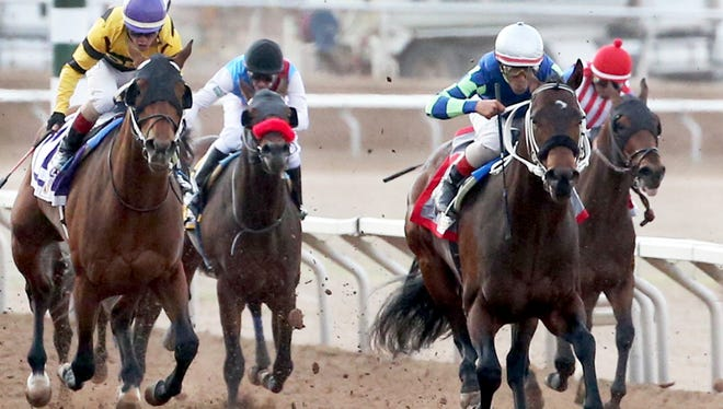 Runaway Ghost, right foreground, with jockey Tracy J. Hebert at the helm steams to the finish line and first place in the 15th running of the Sunland Derby Sunday at Sunland Park Racetrack and Casino.
