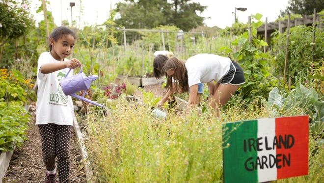 Kids take part in gardening inside the Family Garden at The New York Botanical Garden in New York.