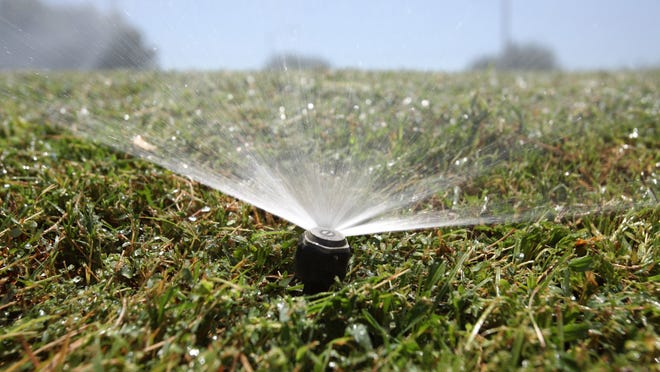 Lawn watering is prohibited between 10 a.m. and 5 p.m. under mandatory water restrictions adopted by Desert Water Agency.