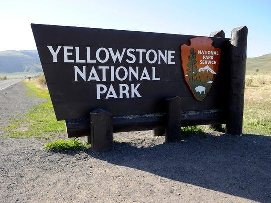 Yellowstone 080714