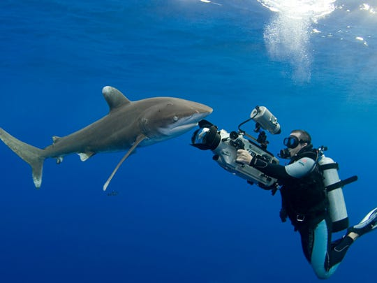 "Discovery Channel's ""Shark Week"" starts July 22."