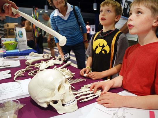 Students learn about the human skeleton during a STEM festival at Drake University in 2015.