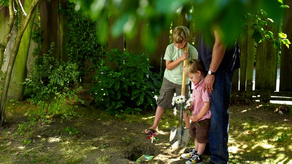 T boys and dad in yard burying pet