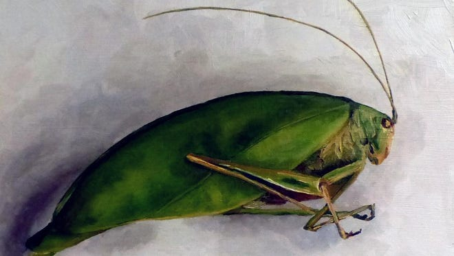 Bugs and birds are the main subjects in artist Krysti Spence's gallery on display in the Farmington Hills City Gallery.