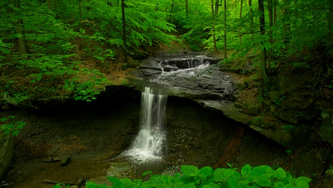 Blue Hen Falls, accessible via a short hike, is one of the park's most popular spots with families.