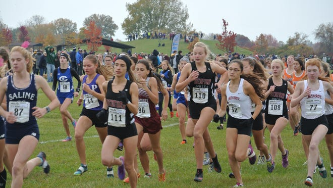 Runners take off in girls race at the Division 1 Regional at Lake Erie Metropark last year. Included in the group are Jasmine Dodson of Gibraltar Carlson (60), Morgan Kay (82) and Bridgette Dudley (77) of Monroe and Isabella Johnson (111), Maddy Foster (110) and Alyssa Dorn (108) of Bedford.