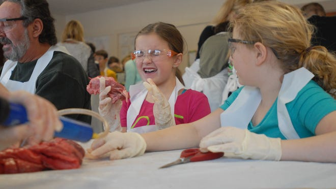 Fifth grader Angel Bourlier grimaces as her classmate Angela Scally looks on during a pig dissection at Algonac Elementary School.