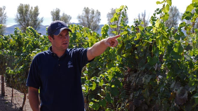 Colby Frey, winemaker and co-owner of Churchill Vineyards, is leading a winery tour and tasting. Winemaking is currently illegal in Washoe and Clark Counties.