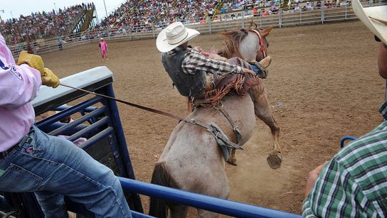 Upon arrival at the Ventura County Fair, PRCA Rodeo,