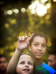 Hannah Albano, 14, of Dunmore, and Gabby Collery, 14, of York, watch as they release a monarch butterfly at Camp Lionheart on Aug, 2.