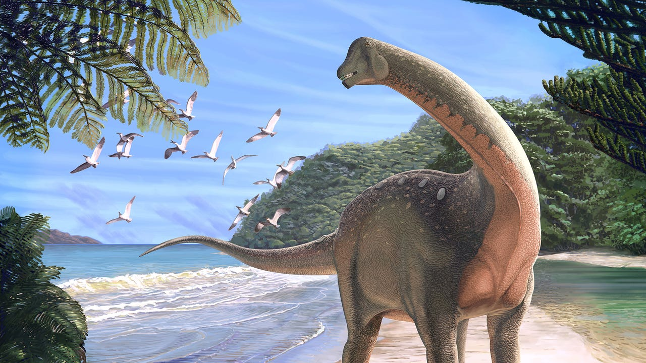 'Holy Grail' of dinosaur fossils found in Egypt