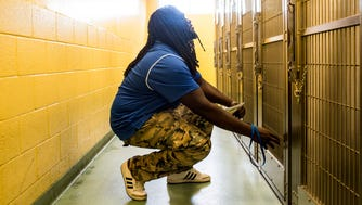 June 23, 2018 - Offensive lineman Roger Joseph leans down to see a dog while volunteering during Tiger Takeover at Memphis Animal Services on Saturday. University of Memphis assistant head coach Ryan Silverfield and the Memphis offensive line assisted Memphis Animal Services to help find homes for needy pets during Tiger Takeover.