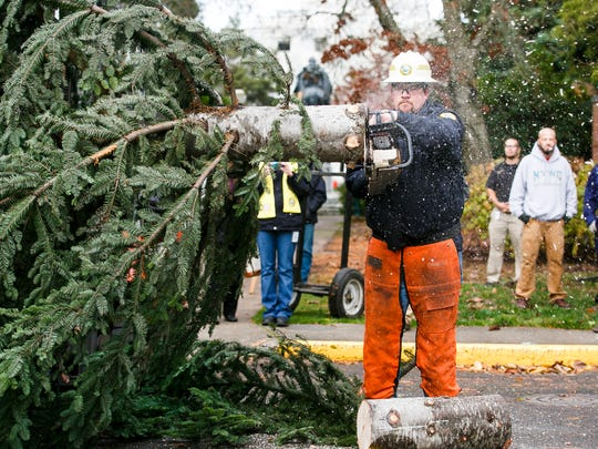 Jason Ringhouse with the Oregon Department of Forestry cuts the trunk of the 30-foot Noble fir as it arrives at the Capitol on Thursday, Nov. 17, 2016.