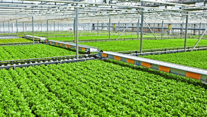 Global Aquaponics Inc. plans to break ground June 7 on a facility near Brookings.