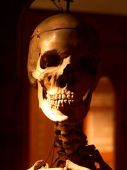The skull of a 7-foot, 6-inch giant peers at visitors to Mutter Museum in Philadelphia.