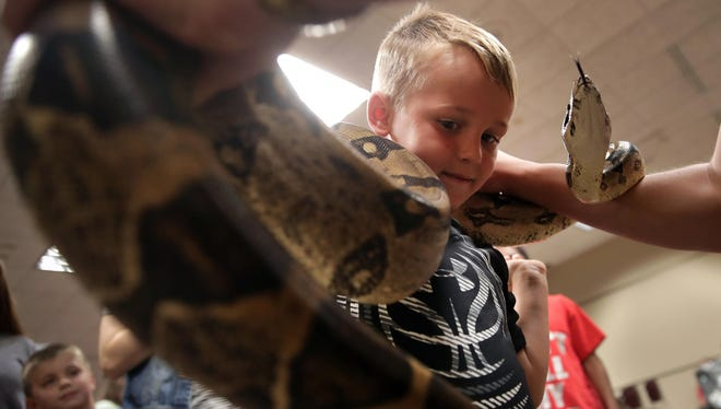 """Kase Vogelsang, 6, of Neenah, has a Red Tail Boa Constrictor placed on his shoulders by Nathan Hogue, a member of Steve Keller's traveling snake show. Keller presented """"Snakes of the World"""" June 13 at the Neenah Public Library."""