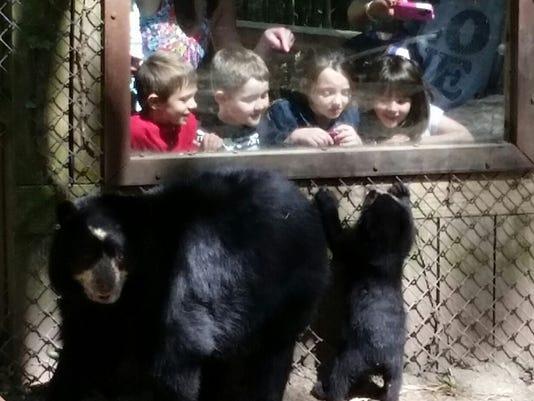 babybear and kids.jpg