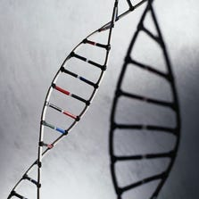 Researchers found that certain genetic profiles matched particular symptoms in people with schizophrenia.
