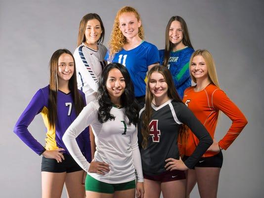 High School Volleyball 2017