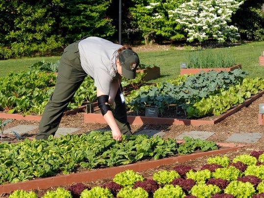Gardening-High Yield
