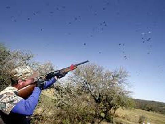 636397122249603423-Dove-Hunting3.jpg