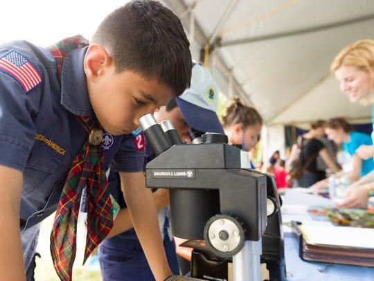 hris Nuñez, 9, of Queens studies seeds at the Biology