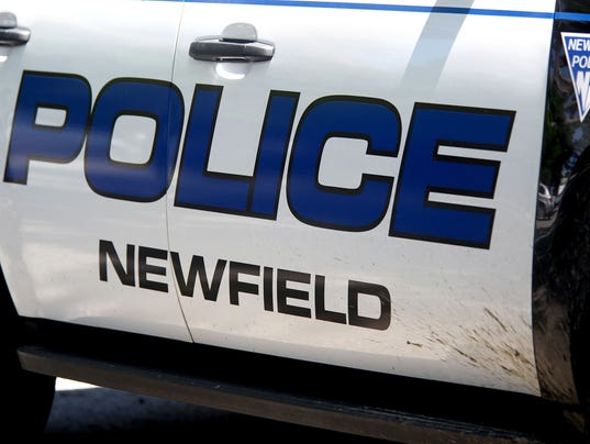 Newfield Police carousel