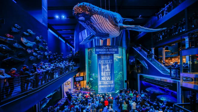 The crowd gives a standing ovation as it is announced that Wonders of Wildlife won the USA TODAY Best New Attraction online poll during a ceremony at the aquarium on Friday, Jan. 5, 2018.