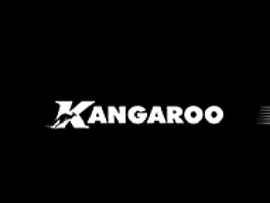 kanga_news_sot_logo