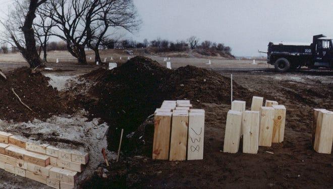 Mass Grave for Infants on Hart Island