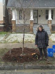 Roberta (Bert) Urbani has planted trees in all kinds of weather as a longtime volunteer for The Greening of Detroit.